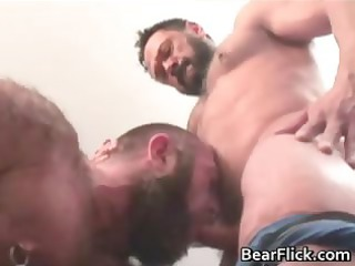hairy gay bear dick sucking porn with brent part6