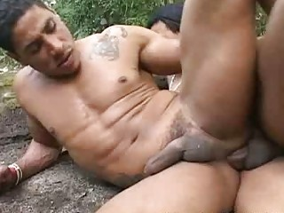 gay latina rough arse primary bareback