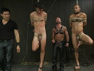 two slim gay dudes inside difficult bondage act