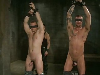 two blindfolded gay boys had roughly tortured