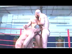 awesome boxers action