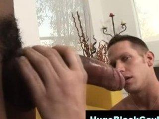gay mixed giant penis visage slap