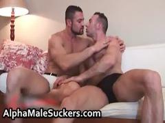 antonio cavalli and marco salqueiro gay boys