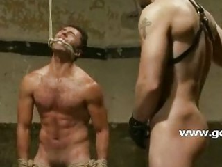 wonderful gay guy hanged up from his hands