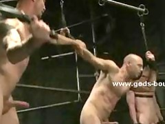powerful tall gay fuck slaves bdsm sex