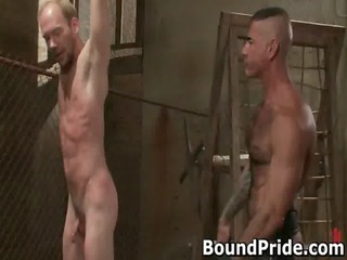 hot awesome gay guys inside extreme gay gays
