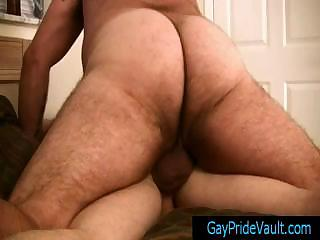 chubby bear humping his little lil gay fucker by