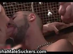 the most desperate gay fucking and sucking part1