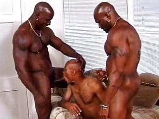 ebony gay bunch  fuck act