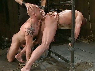 two naughty gay studs forced to have fuck
