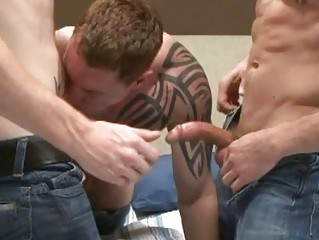triple muscled tattooed gay fellas having super