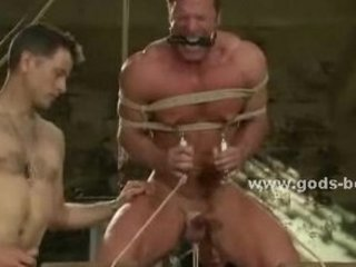 inflexible boobs of a gay is bound inside bulky